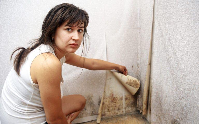 Woman peeling wallpaper to reveal black mold